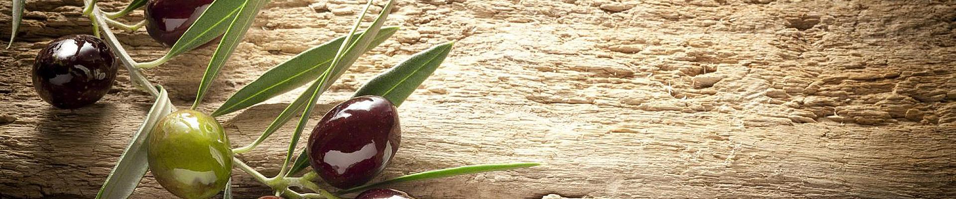 almasol-olivenöl-slider-8